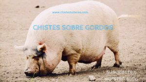 "Los mejores chistes sobre gordos<span class=""wtr-time-wrap after-title""><span class=""wtr-time-number"">2</span> minutos de lectura</span>"