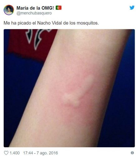 Nacho Vidal de los mosquitos - Chistes sobre animales