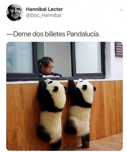 pandas - Chistes sobre animales